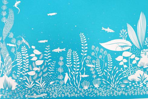 画像:水槽の世界